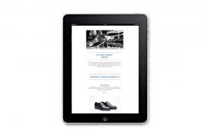 Silany Newsletter Template